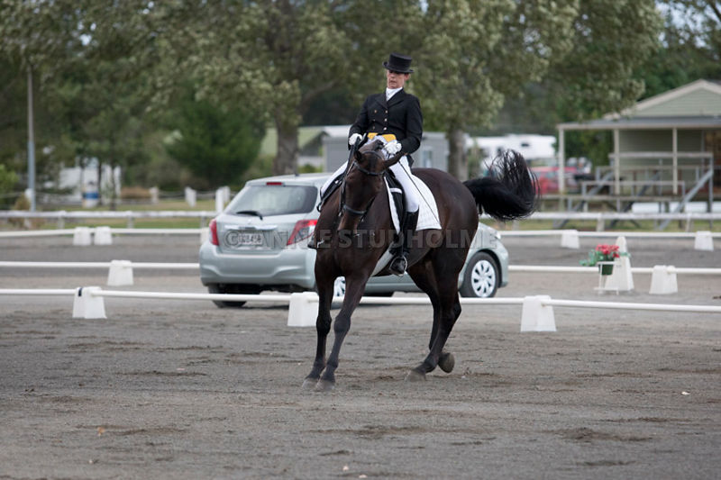 SI_Dressage_Champs_260114_007