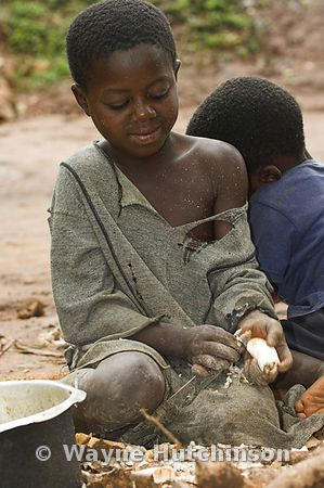 Young African boy peeling cassava root vegetable with knife Kampala Uganda Africa