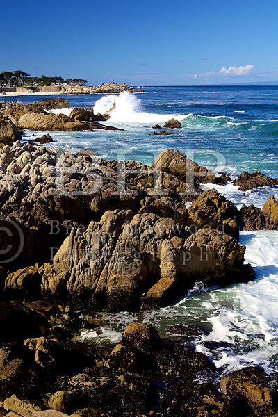 San-Diego-Stock-Photography-Photographer_IMG_9995