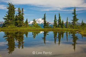 Glacier Peak viewed from a tarn in Mt. Forgotten Meadows, Mt. Baker-Snoqualmie National Forest, Cascade Mountains, Washington, USA, August, 2008_WA_4566