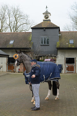Valegro photos