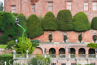 Facade of Powis Castle showing the sequence of garden terraces below it featuring massive clipped yews being shaped by a gardener using a cherry-picker for access