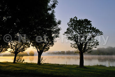 FRANCE, INDRE ET LOIRE, BRUME SUR LA LOIRE//FRANCE, LOIRE VALLEY, MORNING MIST OVER THE LOIRE RIVER