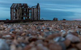 Dungeness_2017_119