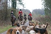 Royal Artillery Hunt 2011 photos