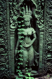 Apsara and vine