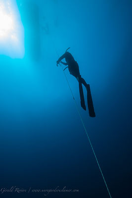 Omniblue Freedive photos sous marines