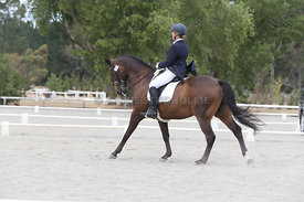 SI_Festival_of_Dressage_310115_Level_8_MFS_1111