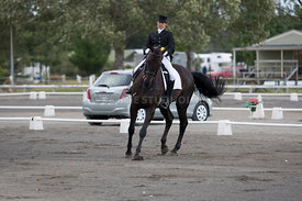 SI_Dressage_Champs_260114_008
