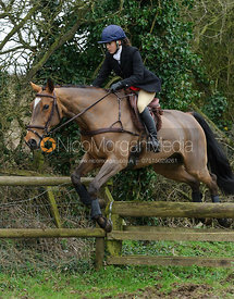 Boogie Machin jumping a hunt jump near Knossington Spinney