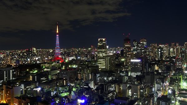Bird's Eye: Blinking City Lights & Tokyo Tower