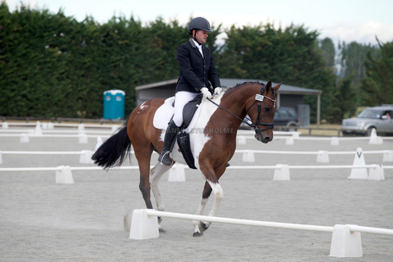 Canty_Dressage_Champs_071214_000