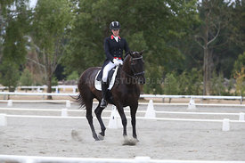SI_Festival_of_Dressage_300115_Level_7_0282