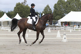 SI_Festival_of_Dressage_310115_Level_4_Champ_0595