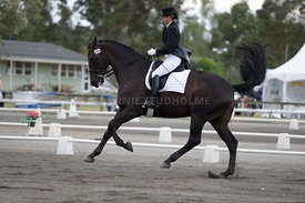 SI_Dressage_Champs_260114_009