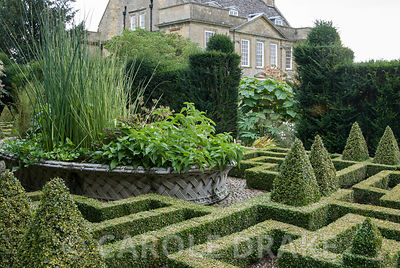 Basket pond at the centre of the Knot Garden came from the 1851 Great Exhibition, with form of Bourton House glimpsed through yew hedge beyond. Bourton House, Bourton-on-the-Hill, Moreton-in-Marsh, Glos, UK