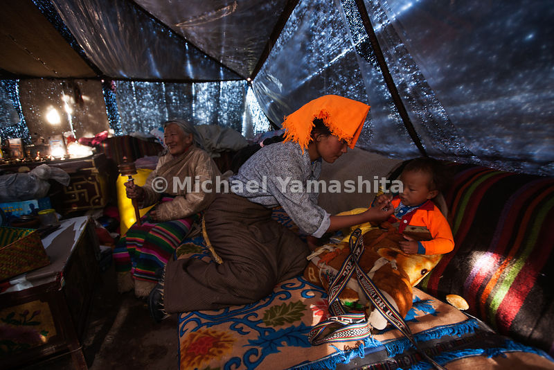 Nomad families spend the Summer months living together in yak-hair tents, grazing their animals and searching for the valuable yartsa gombu (cordyceps) caterpillar fungus.