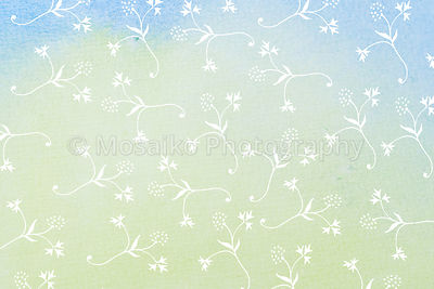 white  little flowers on watercolor paper - flower background - abstract design - hand drawn illustration