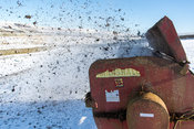 Spreading farm yard manure on land during winter, using a rotary spreader. North Yorkshire, UK.