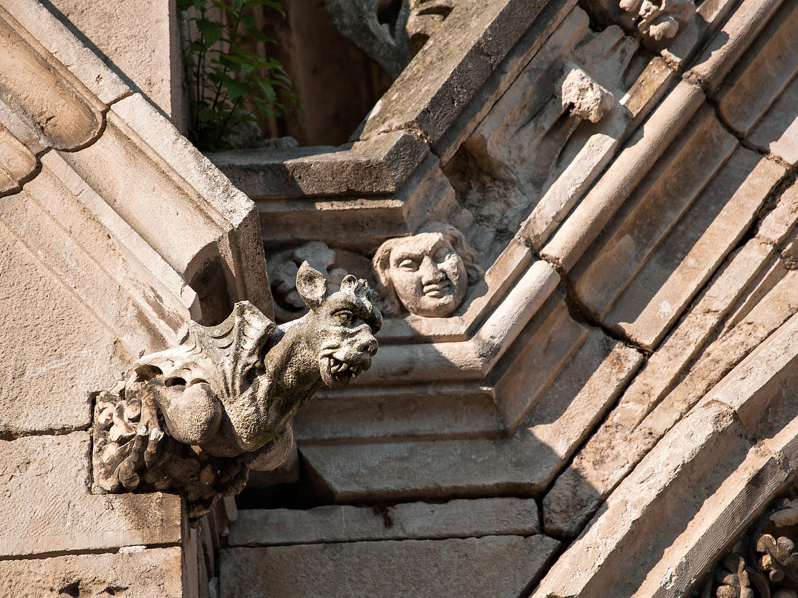 Gargoyle of Chateauneuf sur Cher church