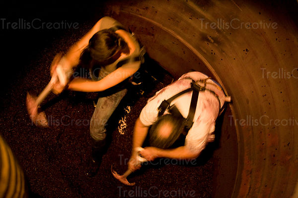 Cellar workers shoveling grape pomace out of a tank