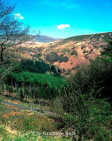 blaen y glyn from the taff trail brecon beacons national park powys wales
