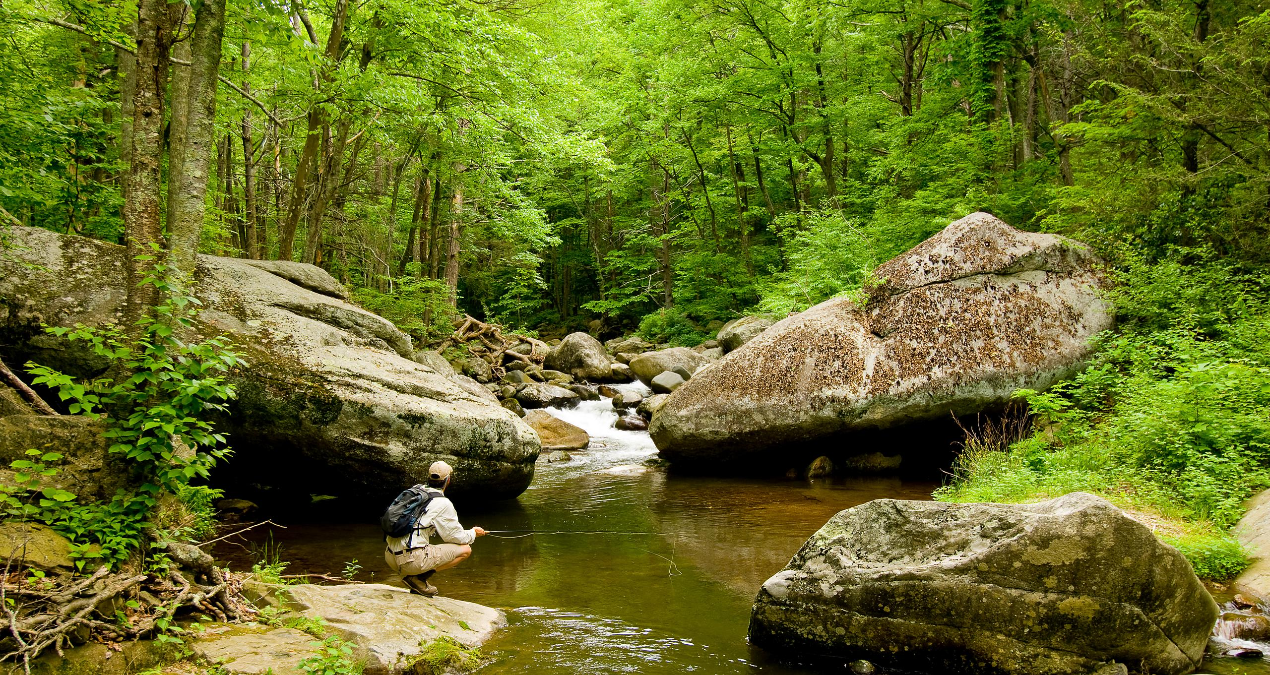 018-Eastern_Landscapes_D105106_BLUE_RIDGE_FLY_FISHING-36_Preview