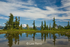 Glacier Peak viewed from a tarn in Mt. Forgotten Meadows, Mt. Baker-Snoqualmie National Forest, Cascade Mountains, Washington, USA, August, 2008_WA_4568