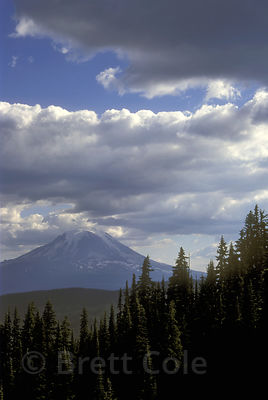Mount Adams from the Goat Rocks Wilderness, Washington Cascades.
