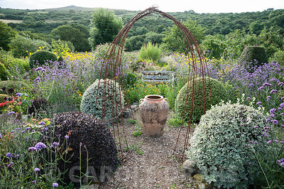 A large oil jar marks the centre of the Rickyard, framed by rusty metal 'arches' and pots of Aeonium 'Zwartkop' with scarlet pelargoniums. Gravel path is lined with lavender, Verbena bonariensis and clipped pittosporums, hebes and box. Dyffryn Fernant, Fishguard, Pembrokeshire, Wales, UK