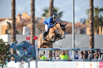 Oliva, Spain - 2018 February 25: Gold tour 1m50 during CSI Mediterranean Equestrian Tour 2.(photo: 1clicphoto.com)