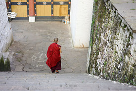 A monk stepping down the stairs at Paro Dzong in Bhutan.