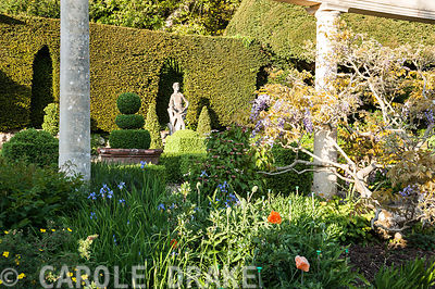 Box parterre with Italian marble statue of youth against the yew hedge seen between columns of the Colonnade on the Great Terrace. Iford Manor, Bradford-on-Avon, Wiltshire