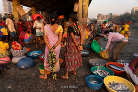Vendors at Sassoon dock, one of the largest fish markets in Mumbai, India