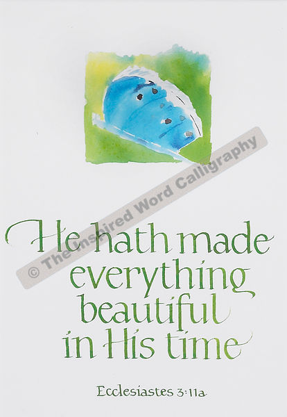 He hath made everything beautiful… - Ecclesiastes 3:11a - in hand lettered calligraphy and hand drawn art - IWC Item:   1108P