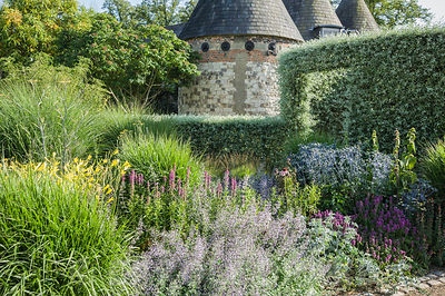 The Courtyard Garden designed by Piet Oudolf and John Coke features a circular entrance of clipped silver pear, Pyrus salicifolia 'Pendula', here seen against a backdrop of oasthouses, and behind a bed of grasses and perennials including eryngiums, stachys, hemerocallis and lythrum. Bury Court Barn, Bentley, Hants, UK