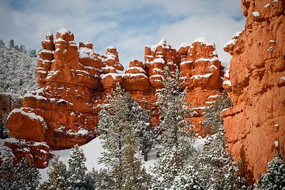 Red Canyon Snow #6