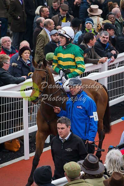 Cheltenham_Gold_Cup_Day_2015_-247