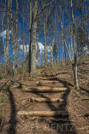 Rustic Log Steps on Trail at Great Serpent Mound