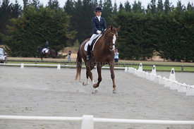 SI_Festival_of_Dressage_300115_Level_4_JLT_0114