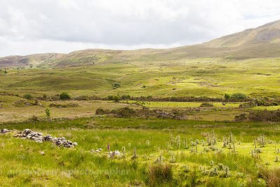 Beautiful and wild inland Connemara, Ireland