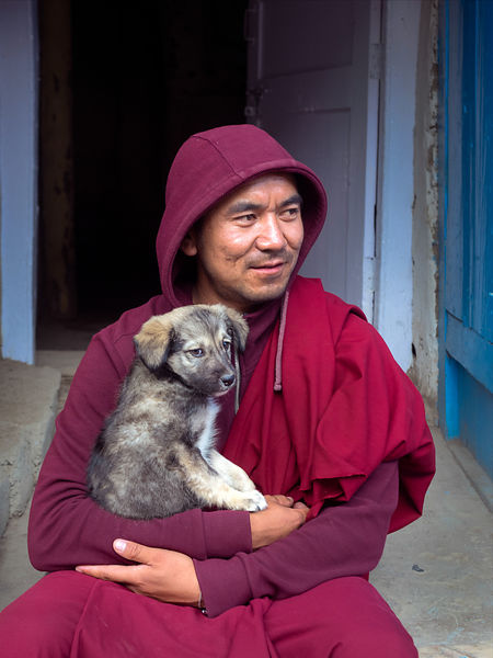This portrait of a monk with his pet was photographed in a Ladakhi monastery.