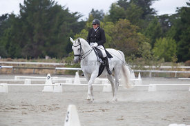 SI_Festival_of_Dressage_300115_Level_6_NCF_0184