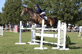 NZ_Nat_SJ_Champs_080215_1m10_pony_0091