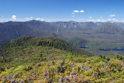 The wilderness of the Great Bear Rainforest in all its splendor, near Hartley Bay. In the foreground is a subalpine Yellow Cedar ecosystem, British Columbia