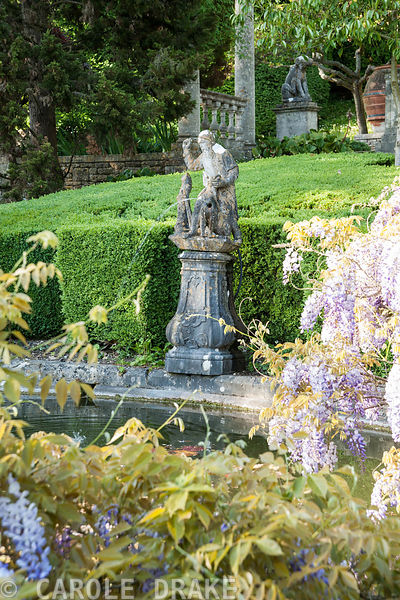 Lily pool surrounded by wisteria with 16th century figure of a huntsman as fountain. Iford Manor, Bradford-on-Avon, Wiltshire