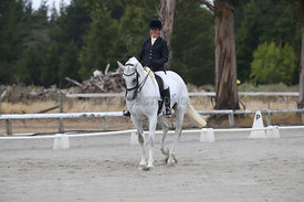 SI_Festival_of_Dressage_310115_Level_5_Champ_0823