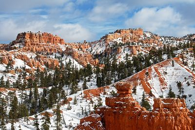 Red Canyon Snow #4
