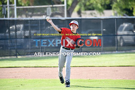 5-30-17_LL_BB_Min_Dixie_Chihuahuas_v_Wylie_Hot_Rods_(RB)-6105
