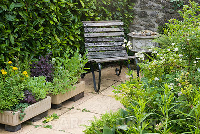 Corner seat beside containers full of sedums, with ferns, astrantias and white martagon lilies, Lilium martagon var album in open border. Snape Cottage, Chaffeymoor, Bourton, Dorset, UK